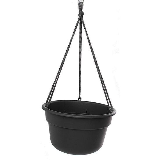 """Bloem Dura Cotta Hanging Basket - 12"""""""
