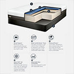 Sealy® Conform Performance Fondness Cushion Firm - Mattress + Box Spring