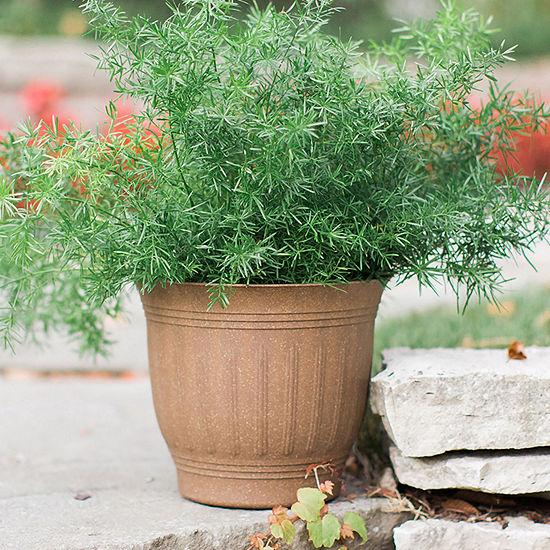 "Bloem Colonnade Wood Resin 20"" Planter"
