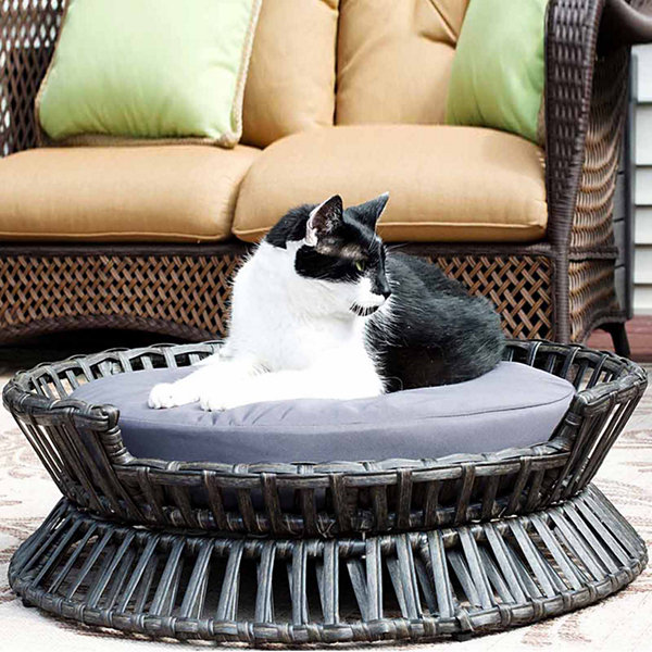 Iconic Pet Rattan Raised Arc Pet Bed