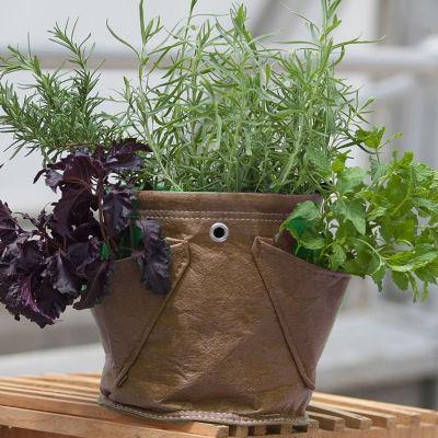 BloemBagz Mini Herb Planter Grow Bag - 1.5 Gallon