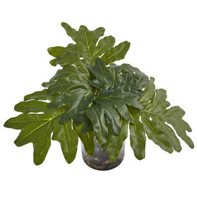 Philodendron Arrangement With Vase