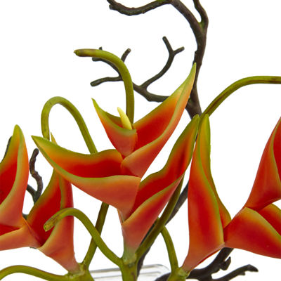 Heliconia In Glass Vase Floral Arrangement