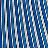Palm Stripe Blue