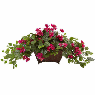 Bougainvillea In Metal Planter