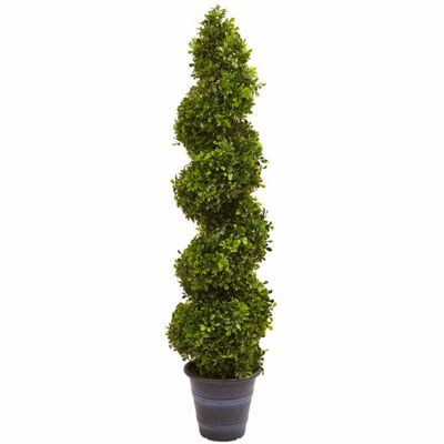 Boxwood Spiral Topiary With Planter