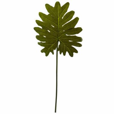 12-pc. Selloum Philo Single Leaf Stem