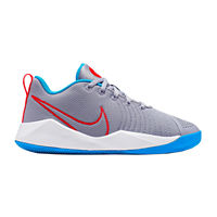 Nike Team Hustle Quick 2 Disrupt Unisex Basketball Shoes