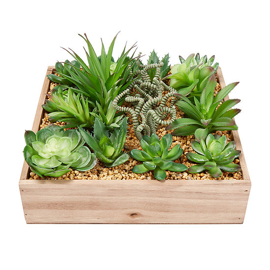 Lavish Home 4-pc. Assorted Faux Succulents With 10 In. Wooden Box