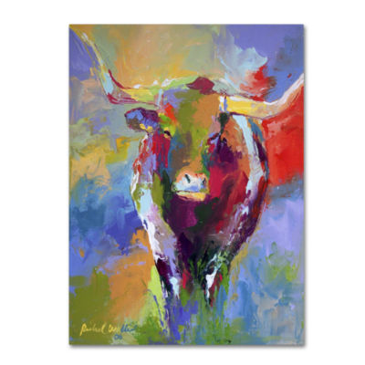 Longhorn Canvas Wall Art