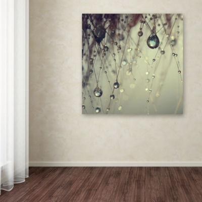 Forgotten Wishes Canvas Wall Art