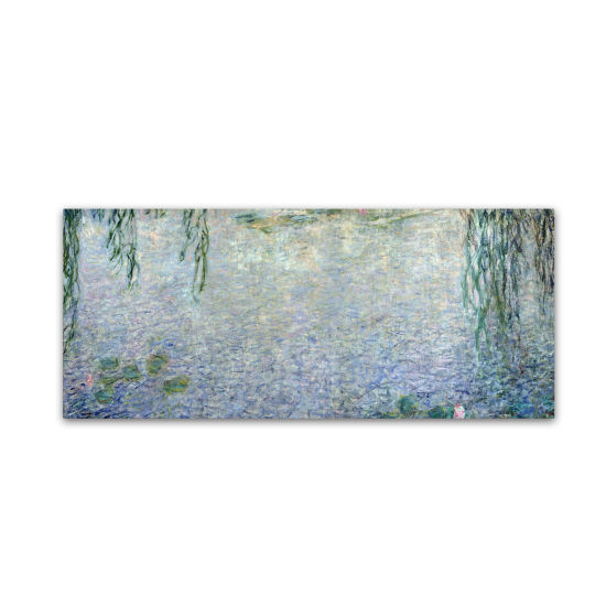 Waterlillies Morning Canvas Wall Art