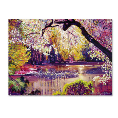 Central Park Spring Pond Canvas Wall Art
