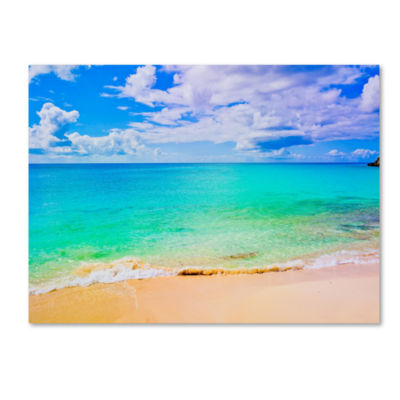 Maho Beach Canvas Wall Art