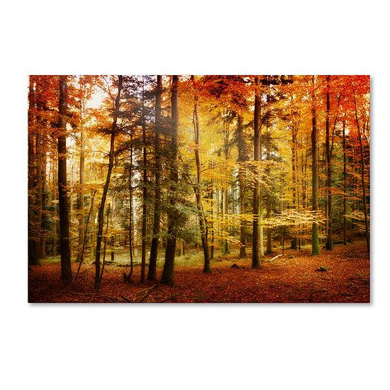 Brilliant Fall Color Canvas Wall Art