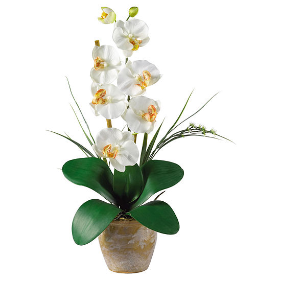 Nearly Natural Phalaenopsis Silk Orchid