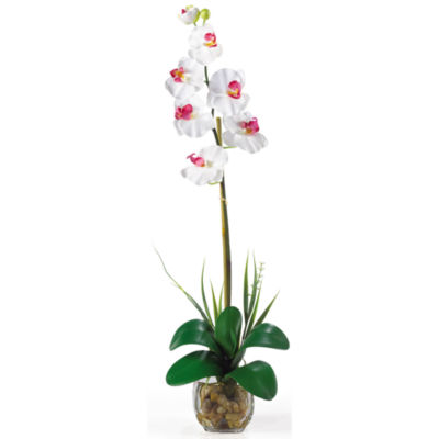 Nearly Natural Single Phalaenopsis Liquid Illusion Silk Flower Arrangement