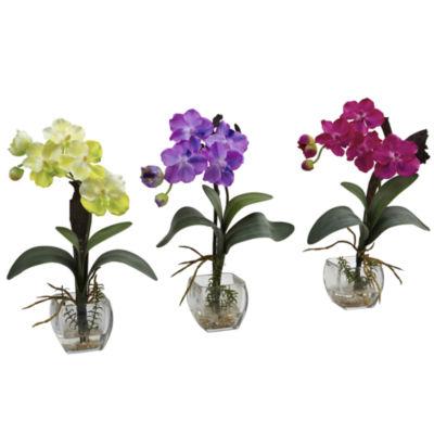 Nearly Natural Mini Vanda Orchid Arrangement Set Of 3