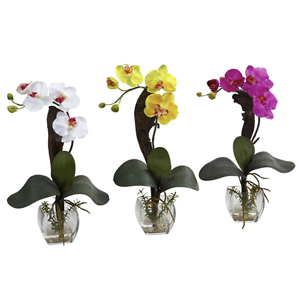 Nearly Natural Mini Phalaenopsis Orchid Arrangement Set Of 3