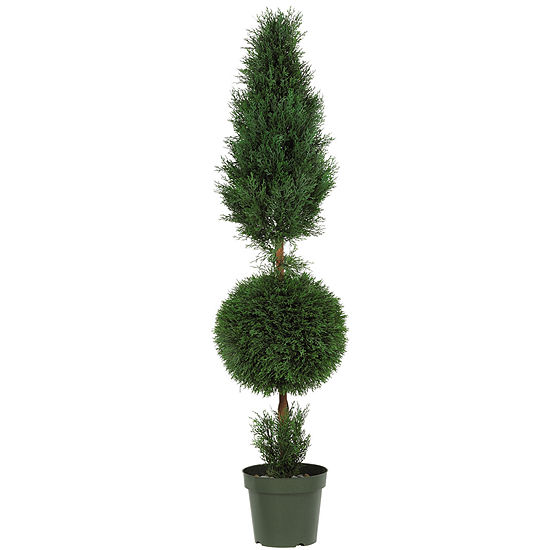 5' Cypress Ball And Cone Silk Tree Indoor/Outdoor