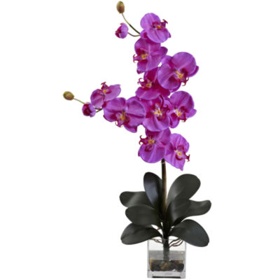 Nearly Natural Double Giant Phalaenopsis With Vase