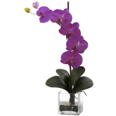 Nearly Natural Giant Phalaenopsis Orchid with Vase Arrangement