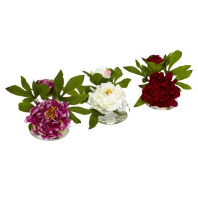 Peony With Glass Vase Set Of 3