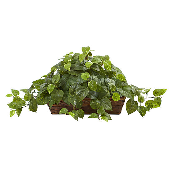Nearly Natural Pothos With Ledge Basket
