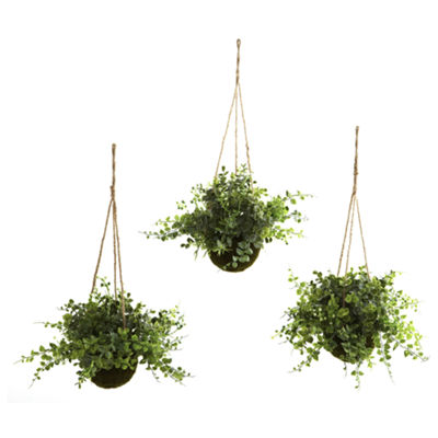 Nearly Natural Eucalyptus, Maiden Hair & Berry Hanging Basket Set Of 3
