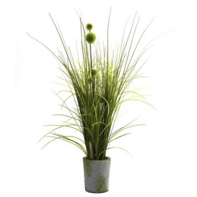 Grass & Dandelion With Cement Planter
