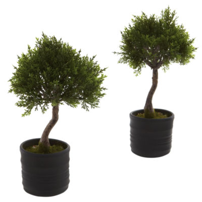 Nearly Natural Cedar Bonsai With Planter Set Of 2
