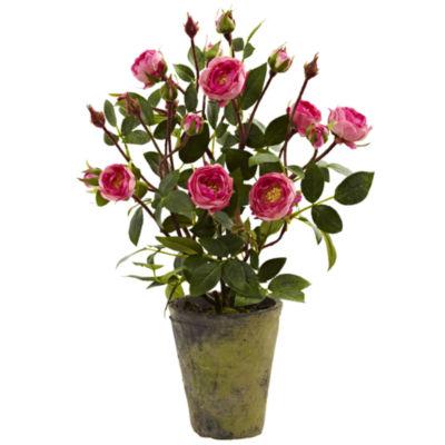 French Rose Garden