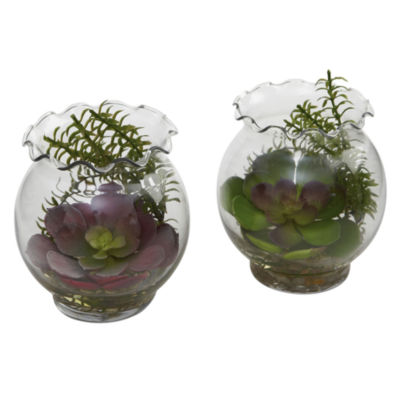 Succulent With Fluted Vase Set Of 2