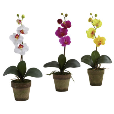 Nearly Natural Potted Phalaenopsis Set Of 3