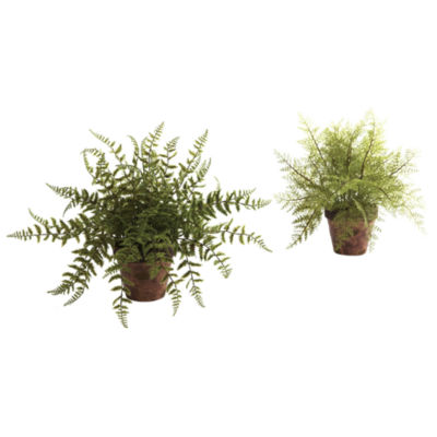 Nearly Natural Fern With Decorative Planter Set Of 2