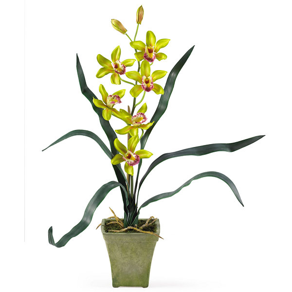 Nearly Natural Cymbidium Orchid With Vase Set Of 3