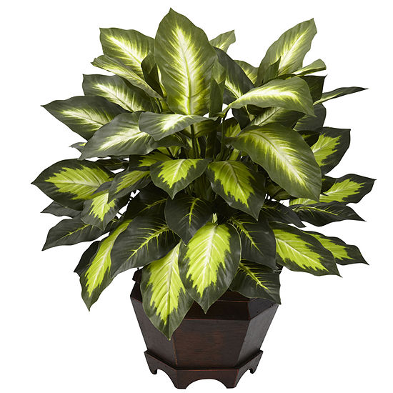 Nearly Natural Triple Golden Dieffenbachia With Wood Vase