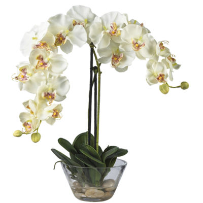 Nearly Natural Phalaenopsis With Glass Vase Silk Flower Arrangement