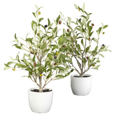 """Nearly Natural 18"""" Olive Silk Tree With Vase Set Of 2"""