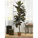 5' Cordyline Silk Plant Real Touch