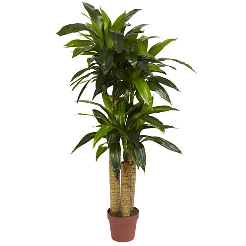 Nearly Natural 4-ft. Corn Stalk Dracaena Silk Plant - Real Touch