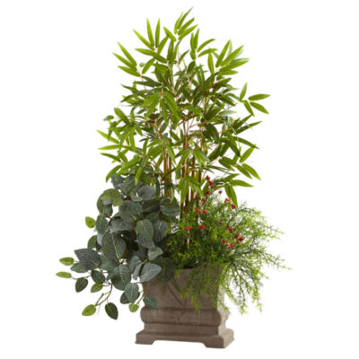 "38"" Mixed Mini Bamboo, Fittonia & Springeri With Planter"