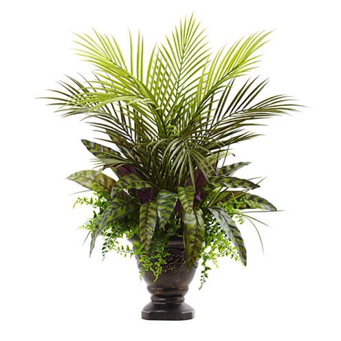 """27"""" Mixed Areca Palm, Fern & Peacock With Planter"""