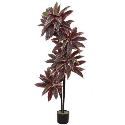 54'' Caladium Silk Plant