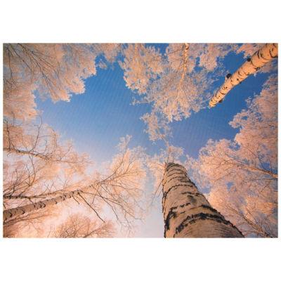 Oriental Furniture Treetops In Daylight Canvas Art