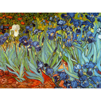 Oriental Furniture Irises By Van Gogh Canvas Art