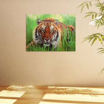 Oriental Furniture Crouching Tiger Animals + Insects Print