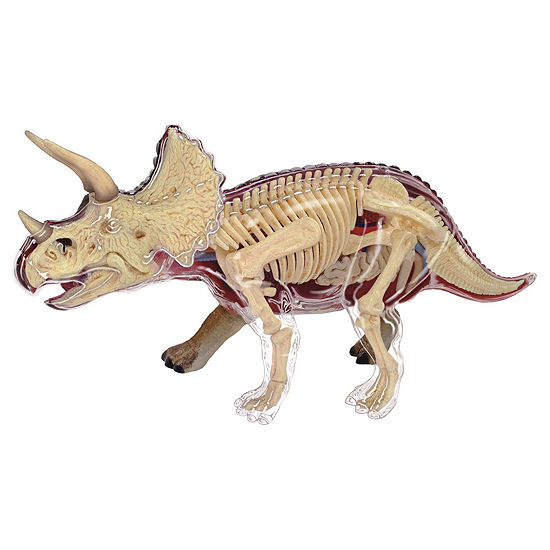4D-Vision Triceratops Anatomy Model