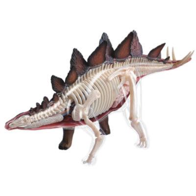 4D-Vision Stegosaurus Anatomy Model