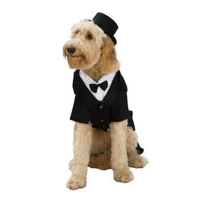 Dapper Dog Pet Costume